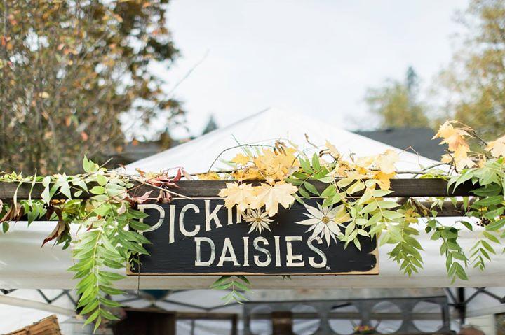 flea-market-magazine-pickin-daisies-image
