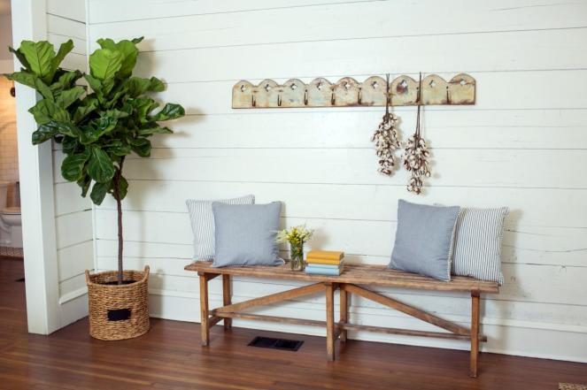 fig leaf tree from fixer upper hgtv